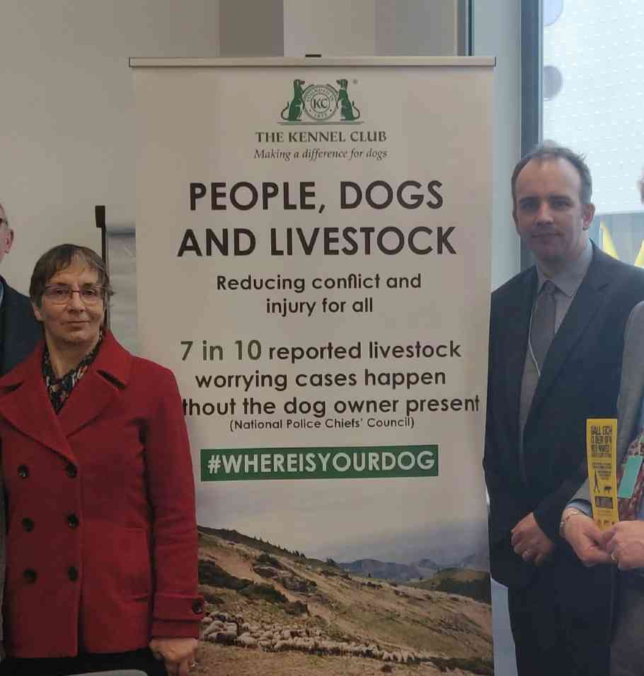Kennel Club launch #Whereisyourdog campaign at The Welsh Assembly